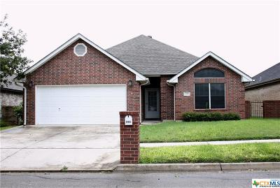 Seguin Single Family Home For Sale: 639 Purple Sage Drive