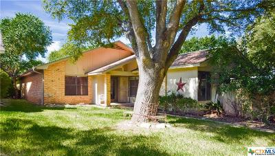 Salado Single Family Home For Sale: 1717 Old Mill Road