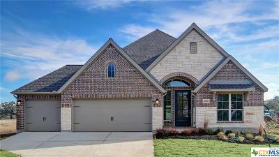 New Braunfels Single Family Home For Sale: 1188 Hammock Glen