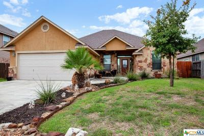 New Braunfels Single Family Home For Sale: 948 Divine Way