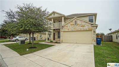 New Braunfels Single Family Home For Sale: 2124 Sinclair Drive