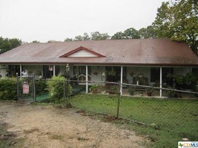 Belton Single Family Home For Sale: 4240 Water Works