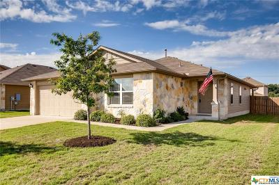Hutto Single Family Home For Sale: 1002 Mitchell