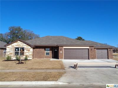 Copperas Cove Single Family Home For Sale: 1713 Risen Star Lane