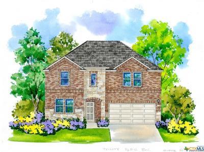 New Braunfels Single Family Home For Sale: 170 Landing Lane