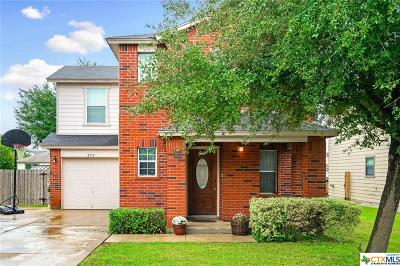 San Marcos Single Family Home For Sale: 292 Cordero