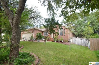 Cibolo Single Family Home For Sale: 205 Doral