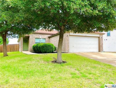 San Marcos Single Family Home For Sale: 115 Teron