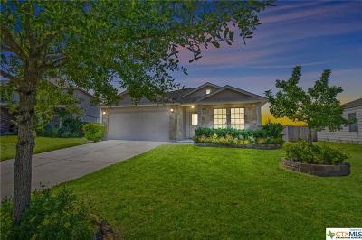 Round Rock Single Family Home For Sale: 2708 Herrington