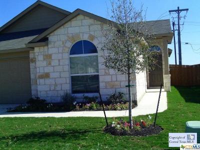 San Marcos Rental For Rent: 309 Teron