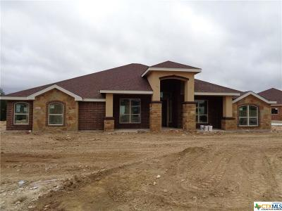 Lampasas County Single Family Home For Sale: 905 Cr 4772