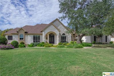 Williamson County Single Family Home For Sale: 205 Buena Vista Drive