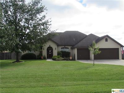 Seguin Single Family Home For Sale: 193 Castlewood