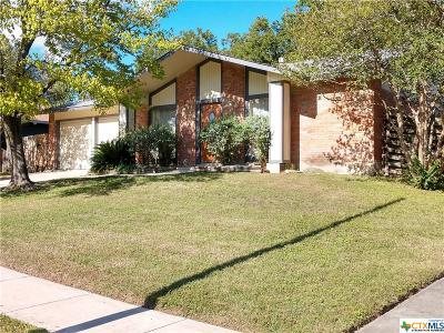 San Antonio Single Family Home For Sale: 12802 Provision Street