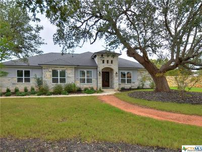Williamson County Single Family Home For Sale: 300 Aldea Cove