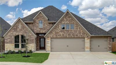 San Antonio Single Family Home For Sale: 8823 Haystack Road