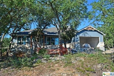 Canyon Lake Single Family Home For Sale: 1400 Scenic View Drive