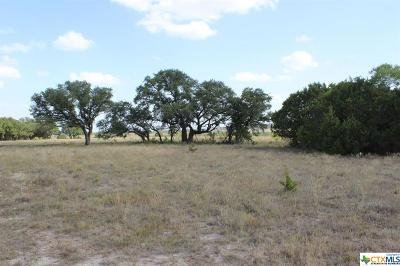 Lampasas Residential Lots & Land For Sale: 6903-7 Tbd Cr 2001- Tract 7