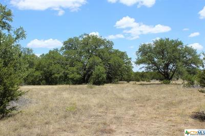 Lampasas Residential Lots & Land For Sale: 6903-4 Tbd Cr 2001- Tract 4
