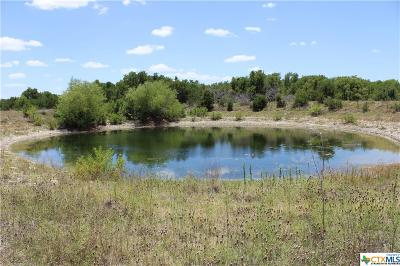 Lampasas Residential Lots & Land For Sale: 6903-3 Tbd Cr 2001- Tract 3