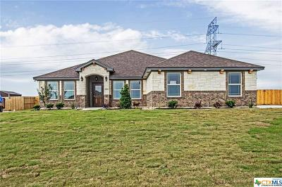 Lampasas County Single Family Home For Sale: 4013 Joe Bozon Drive