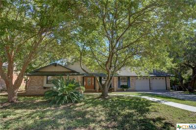 New Braunfels Single Family Home For Sale: 213 Briarwood