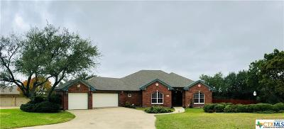 Belton Single Family Home For Sale: 4099 Lago Vista Drive
