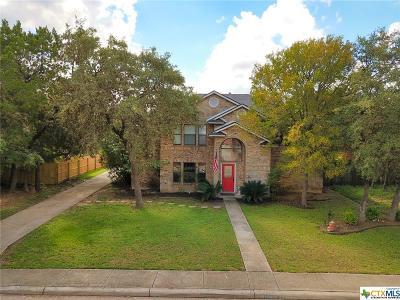 San Antonio Single Family Home For Sale: 14214 Emerald Hill Drive