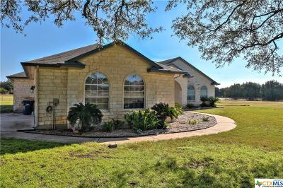 Williamson County Single Family Home For Sale: 1450 County Road 245