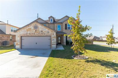 Round Rock Single Family Home For Sale: 5901 Mantalcino