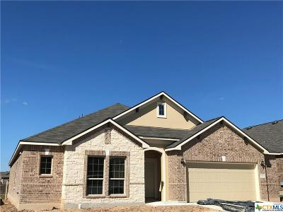 New Braunfels Single Family Home For Sale: 1732 Fall View