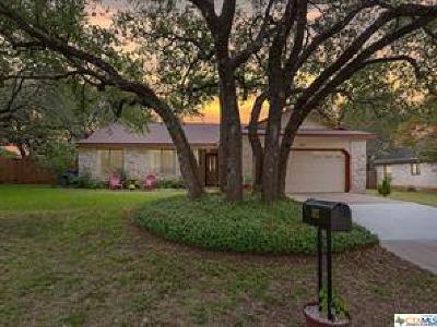 Cedar Park Single Family Home For Sale: 302 Chaco Canyon