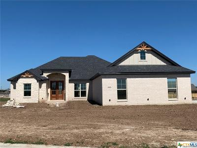 Salado Single Family Home For Sale: 4338 Green Creek Drive
