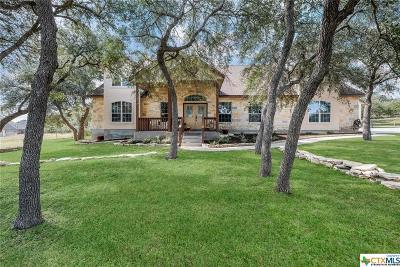 Spring Branch Single Family Home For Sale: 531 Flightline
