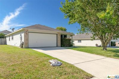 New Braunfels Single Family Home For Sale: 2034 Dragon Trail