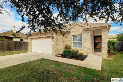 Leander Single Family Home For Sale: 211 Housefinch Loop