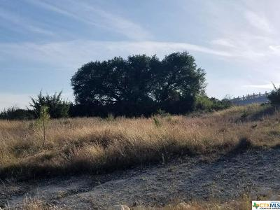 Kempner Residential Lots & Land For Sale: Tbd County Road 3300