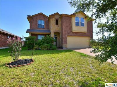 Jarrell Single Family Home For Sale: 221 Biles
