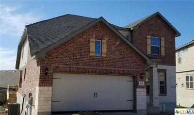 New Braunfels Single Family Home For Sale: 892 Maple Drive