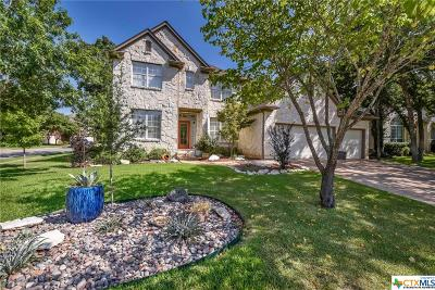 Round Rock Single Family Home For Sale: 2500 Resnick Drive