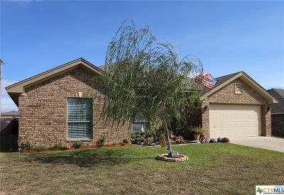 Killeen Single Family Home For Sale: 9510 Diana Drive