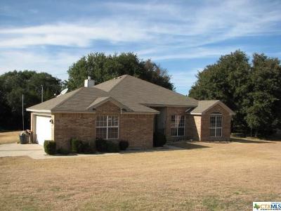 Kempner TX Single Family Home For Sale: $205,000