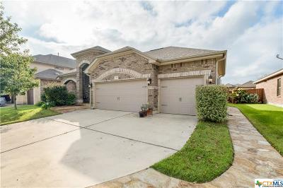 San Marcos TX Single Family Home Pending: $274,995