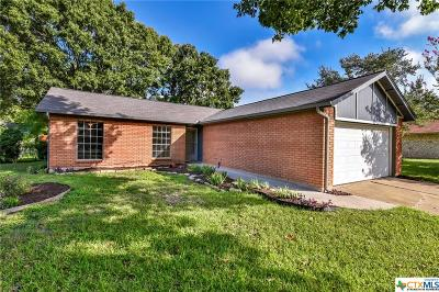 Round Rock Single Family Home For Sale: 1006 Long Meadow