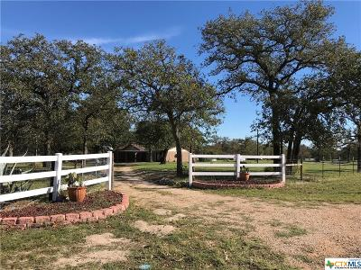 Seguin Single Family Home For Sale: 595 Blackjack Oak Road