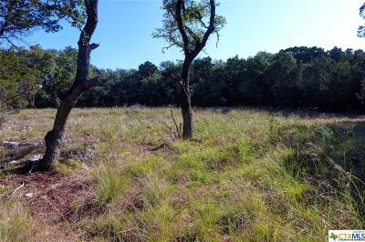 New Braunfels Residential Lots & Land For Sale: 9039 Blue Point
