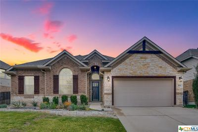 Round Rock Single Family Home For Sale: 4507 Miraval