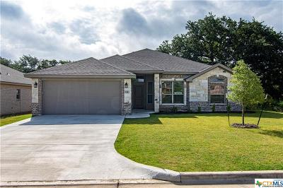 Belton Single Family Home For Sale: 521 Holstein Drive