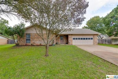 Salado Single Family Home For Sale: 1510 Guess Dr.