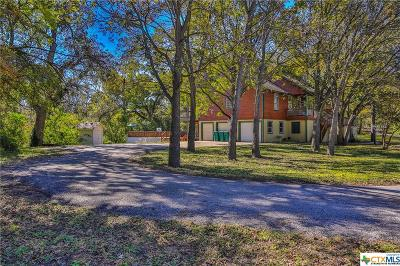 Belton Single Family Home For Sale: 110 Elm Drive